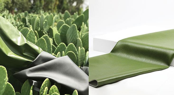 تولید چرم کاکتوس توسط یک شرکت مکزیکی