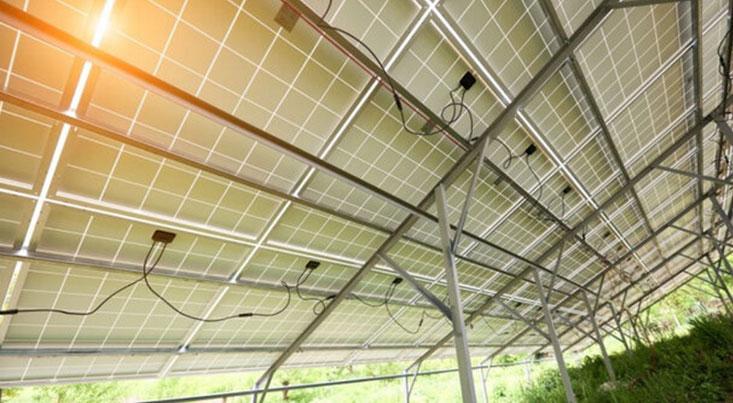 ساخت صفحات خورشیدی رنگی برای تولید همزمان برق و مواد غذایی